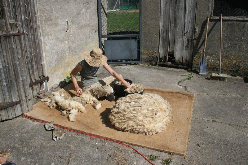 al-terre-ferme-triage-laine
